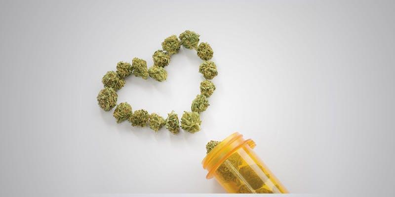 40 Australian Children 1 THC: Everything You Need To Know About Delta9 Tetrahydrocannabinol