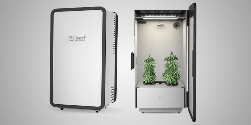 5 latest weed tech gadgets 1 1 THC: Everything You Need To Know About Delta9 Tetrahydrocannabinol