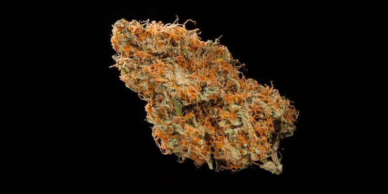 7 Hottest New Sativas 5 All In The Mind #5: Cannabis And Bipolar Disorder