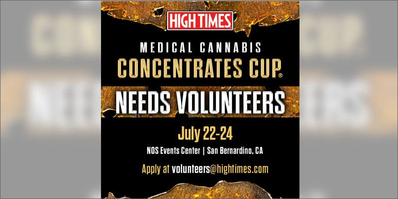 7 high times medical cannabis concentrates cup ad All In The Mind #5: Cannabis And Bipolar Disorder