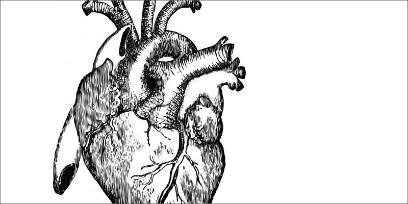 7 reasons hemp seeds must be in life heart illustration Cannabis And Sex: How Much Do You Really Know?