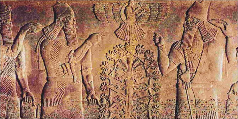 Bronze Age Humans 1 THC: Everything You Need To Know About Delta9 Tetrahydrocannabinol