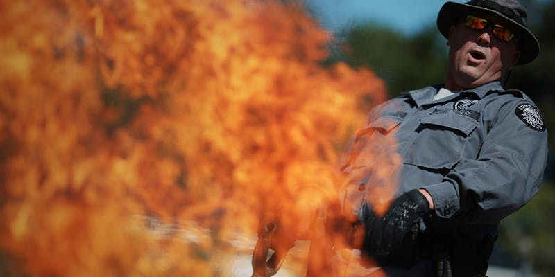 Cops Burning Illegal Weed 1 Get Ready Florida! Legal Weed Will Be Yours Next Week
