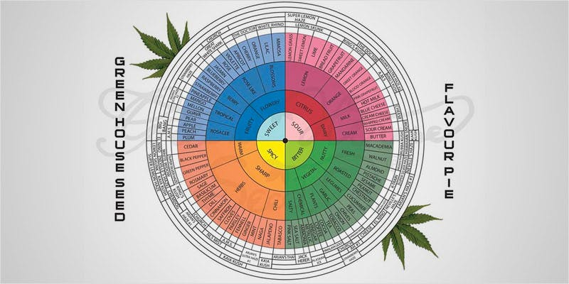 Decarboxylation Why You Should 5 Decarboxylation: What It Is, & Why You Should Decarb Your Weed