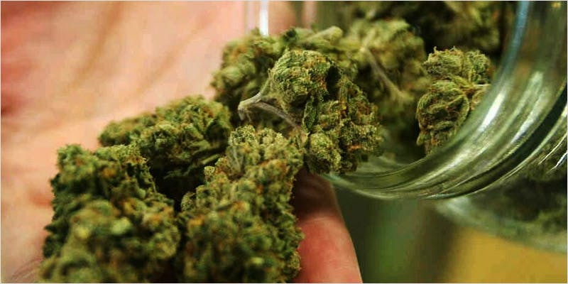 Get Ready Florida Legal 2 THC: Everything You Need To Know About Delta9 Tetrahydrocannabinol