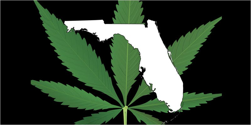 Get Ready Florida Legal 3 THC: Everything You Need To Know About Delta9 Tetrahydrocannabinol