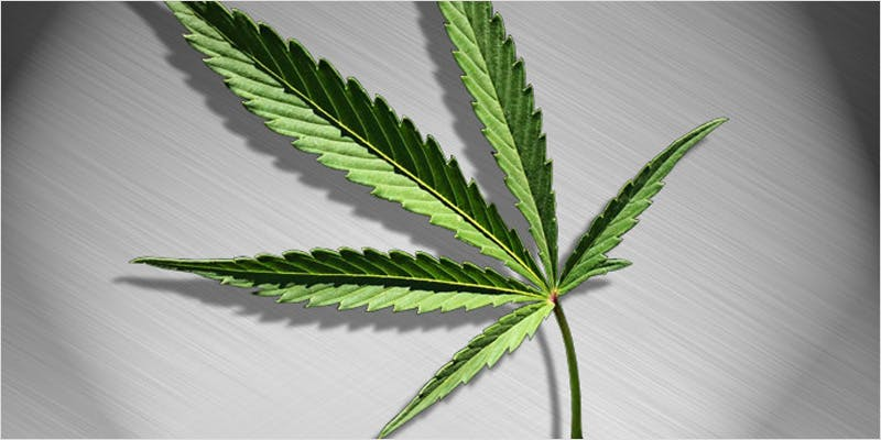 THC article update 2 THC: Everything You Need To Know About Delta9 Tetrahydrocannabinol