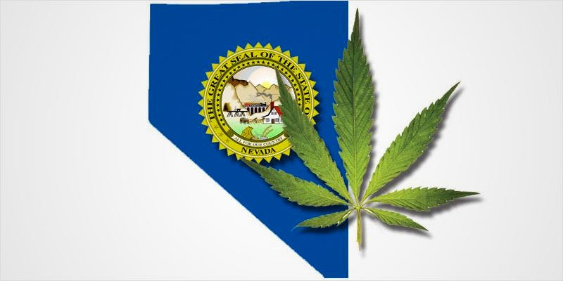 This Week In Cannabis Politics 9 THC: Everything You Need To Know About Delta9 Tetrahydrocannabinol
