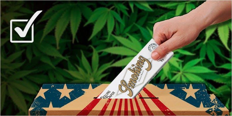 cannabis law reform