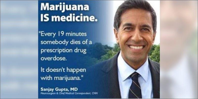 cannabis activists to follow sanjay gupta THC: Everything You Need To Know About Delta9 Tetrahydrocannabinol