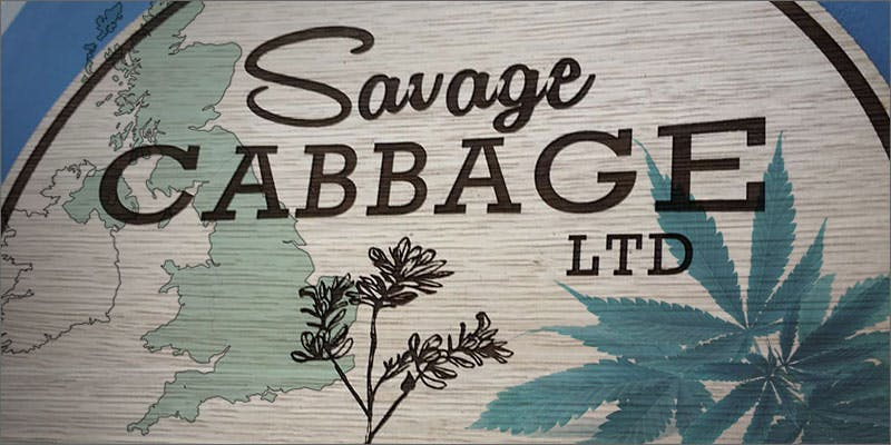 savage cabbage