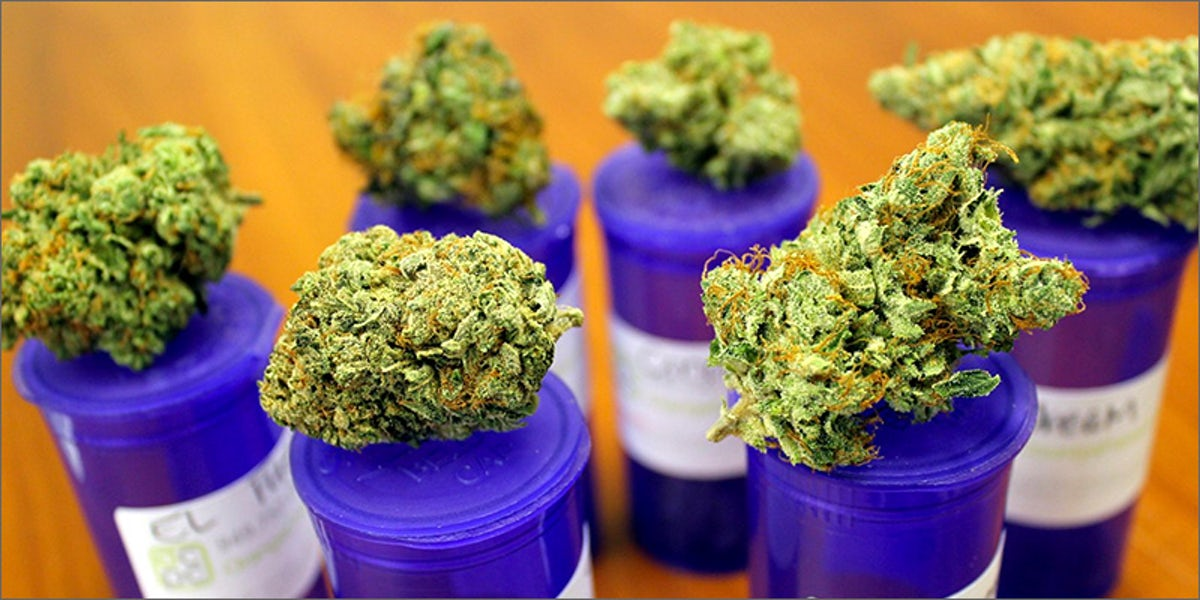10 Best Medical Cannabis Strains You Should Be Using   Herb