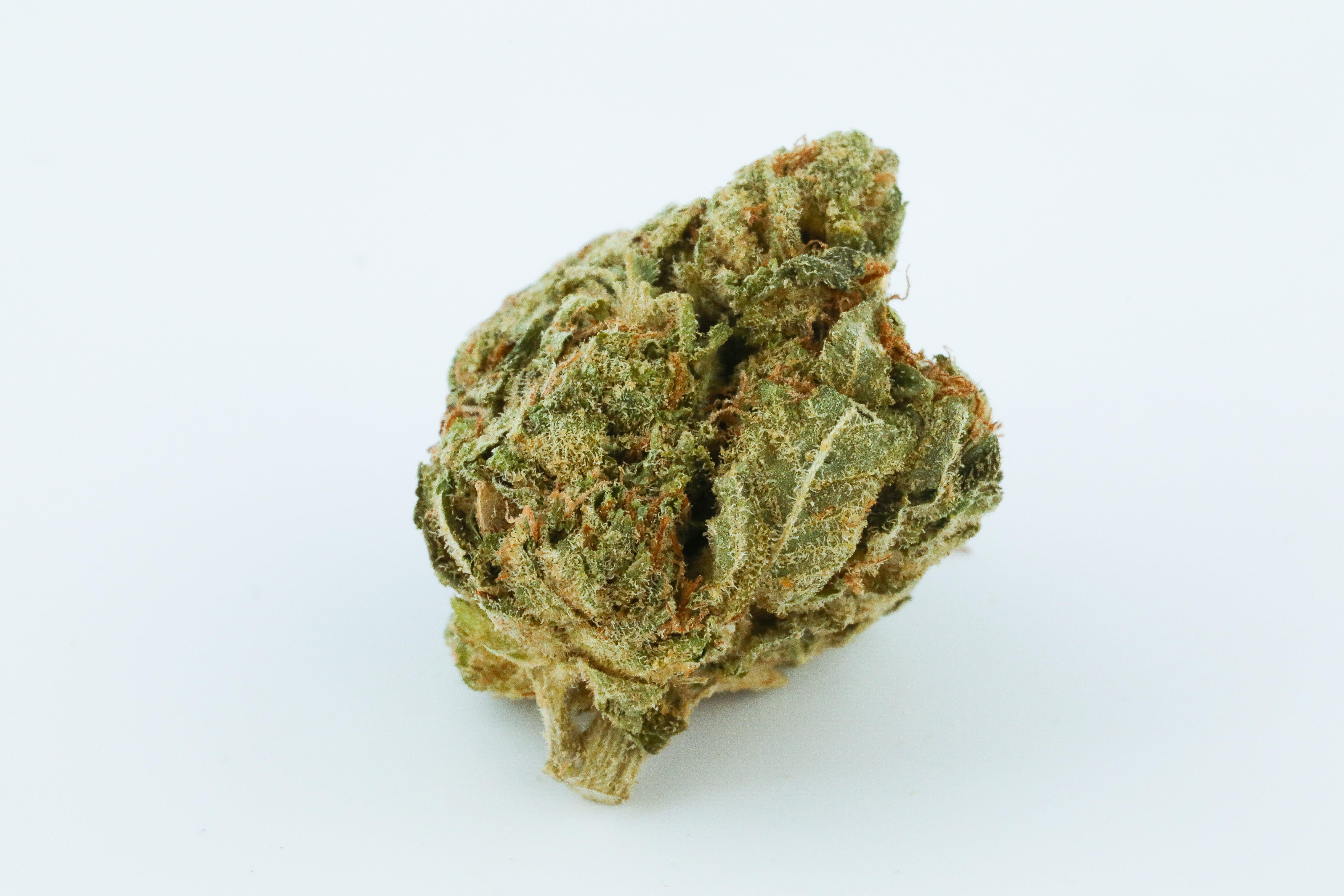 AK-47 Weed; AK-47 Cannabis Strain; AK-47 Hybrid Marijuana Strain