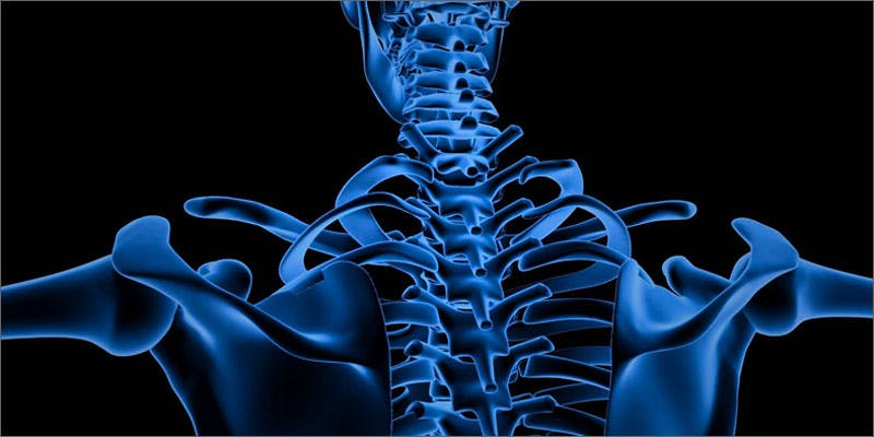 1 cannabis improves bone xray State Of Marijuana: The Most Important Cannabis Event This Year