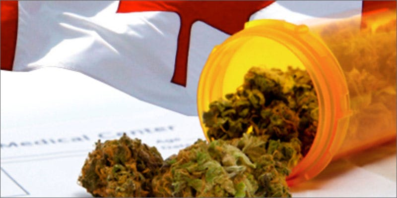 2 canadian cannabis study prescription Michigan Govenor Takes Initiative With State Medical Progam