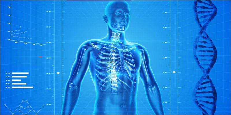 2 cannabis improves bone dna State Of Marijuana: The Most Important Cannabis Event This Year