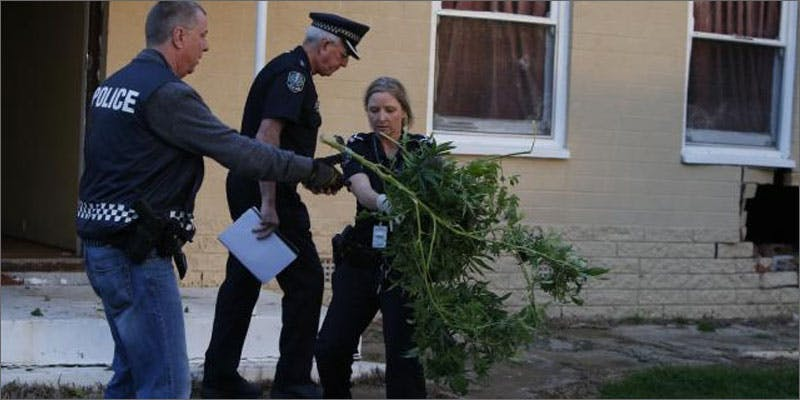 2 car crash into house reveals cannabis grow police Getting Smashed: How A Car Crash Exposed A House Full Of Weed