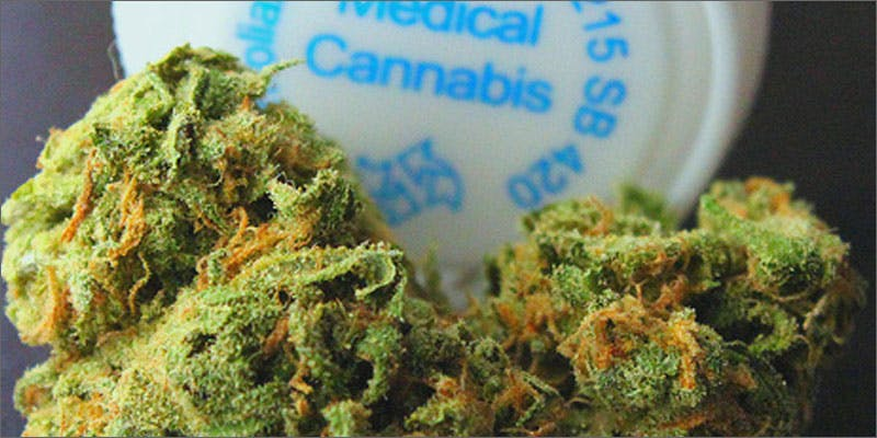 2 government patent cannabis medicine State Of Marijuana: The Most Important Cannabis Event This Year