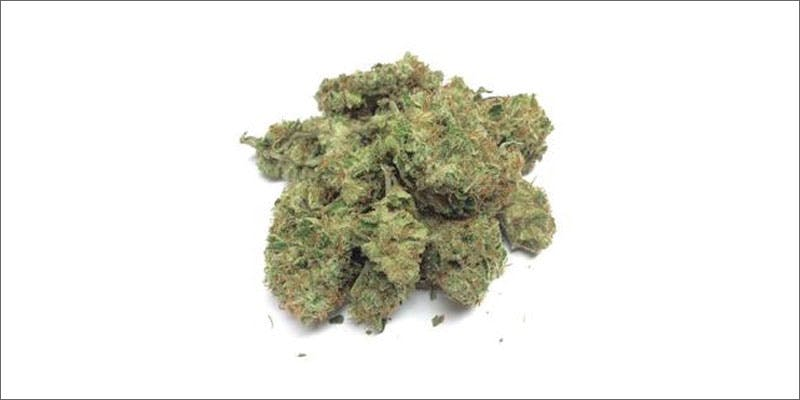 4 strongest strains on earth ygriega Cannabis And Sex: How Much Do You Really Know?