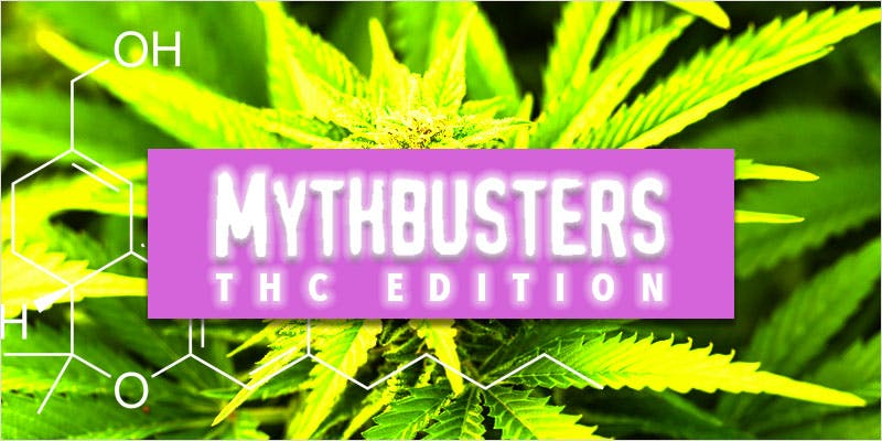 Common Myths Surrounding THC