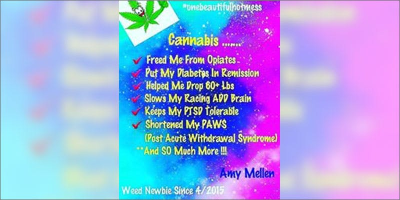 8 real life success stories amy meller benefits State Of Marijuana: The Most Important Cannabis Event This Year
