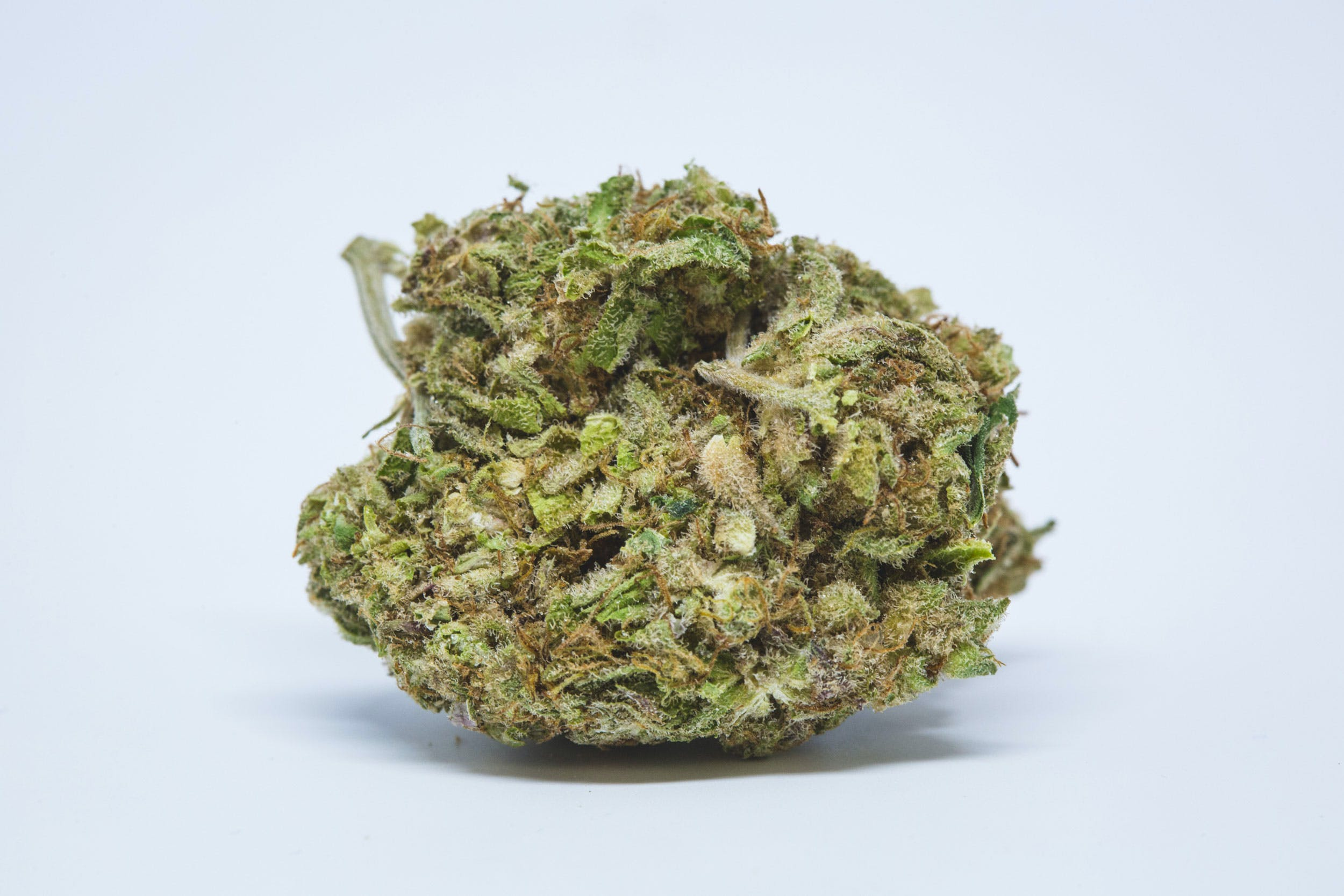 Agent Orange Weed; Agent Orange Cannabis Strain; Agent Orange Hybrid Marijuana Strain