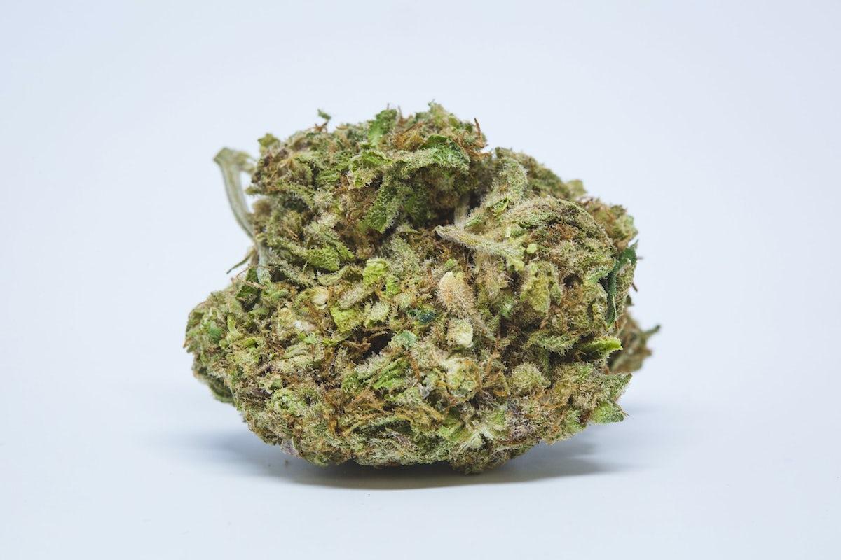 Buy Agent Orange Marijuana