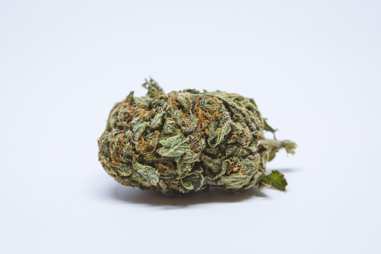 Berry White Weed; Berry White Cannabis Strain; Berry White Hybrid Marijuana Strain