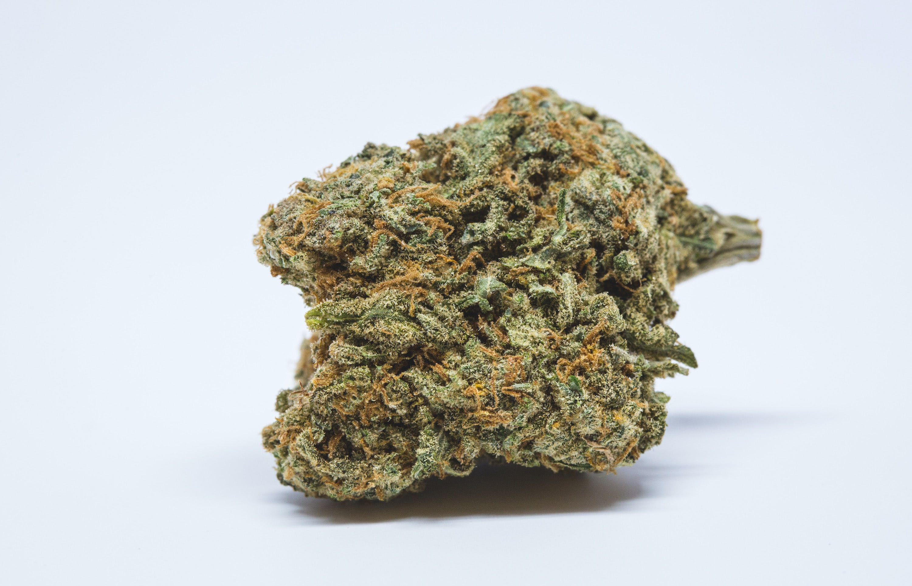 Allevi8 Blue Cheese 11 copy Congress Blocks Recreational Marijuana Sales In Washington, D.C.