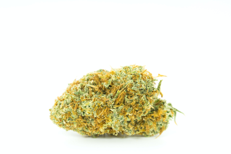 Amnesia Haze Weed; Amnesia Haze Cannabis Strain; Amnesia Haze Sativa Marijuana Strain