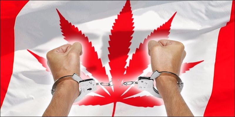 CANADA TO ALLOW MEDICAL 3 Grow Canada! Patients Given Green Light To Grow Medicine