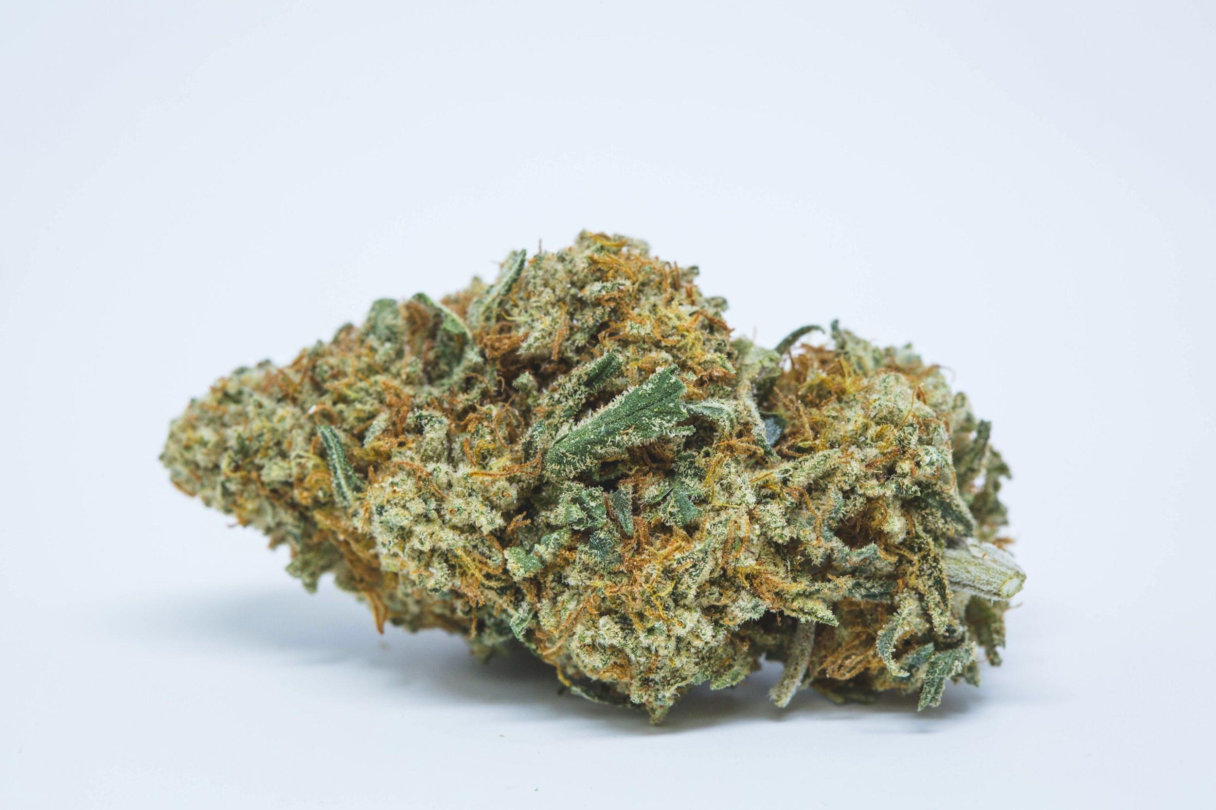 Golden Goat Weed; Golden Goat Cannabis Strain; Golden Goat Sativa Marijuana Strain