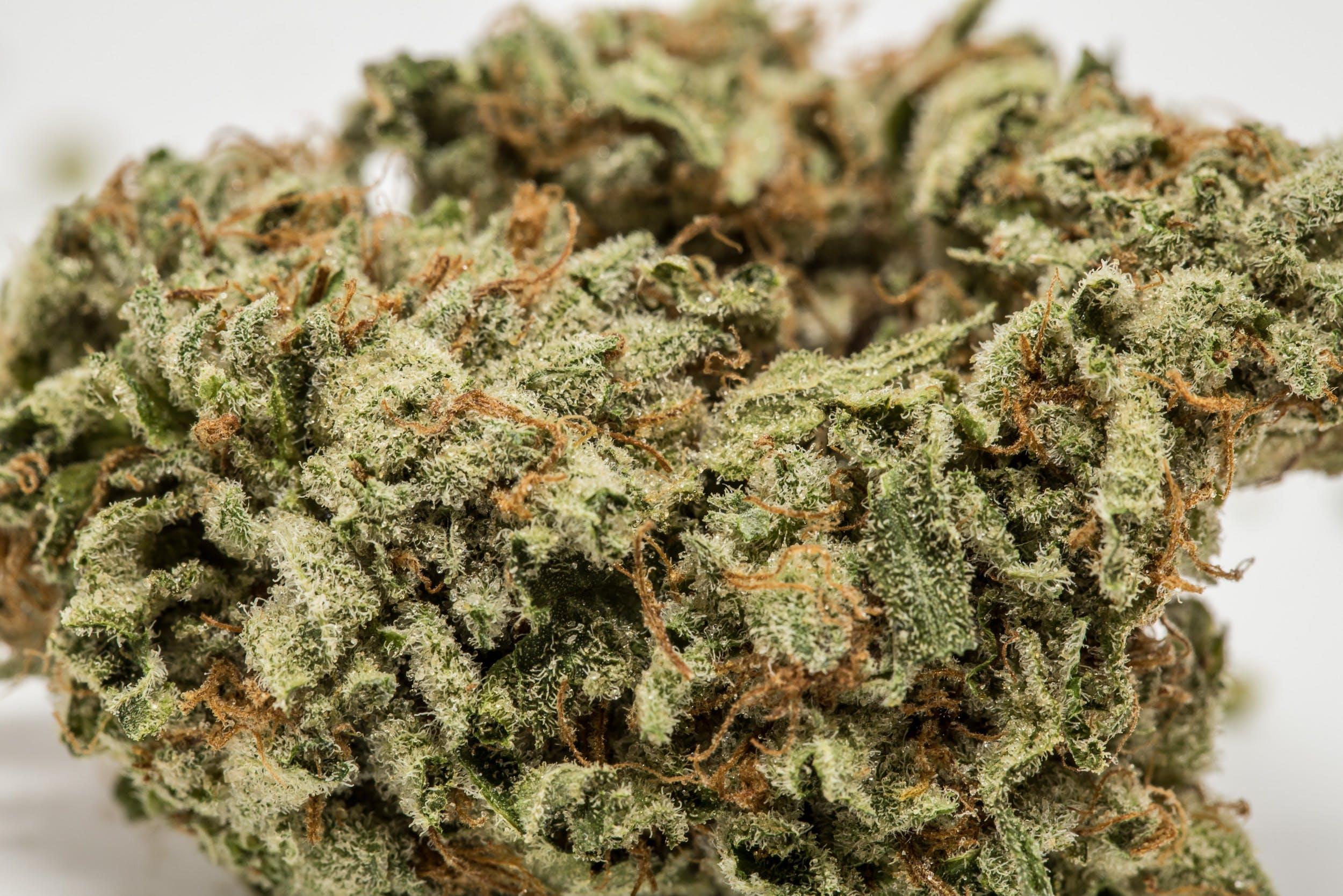 LA Confidential Weed; LA Confidential Cannabis Strain; LA Confidential Indica Marijuana Strain