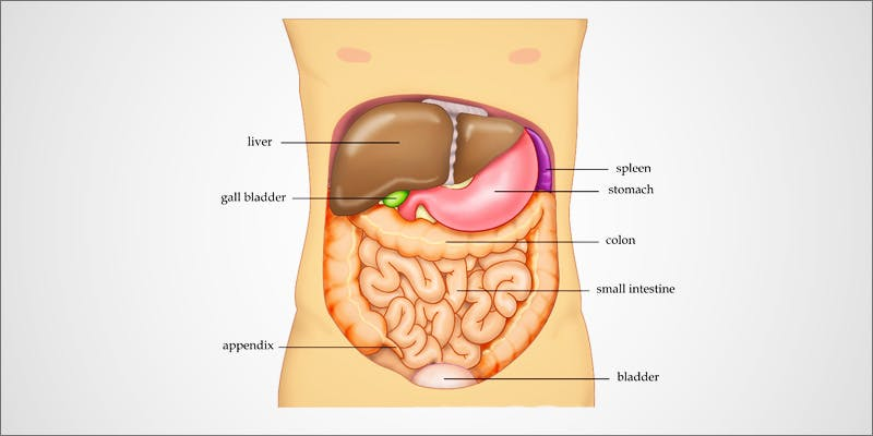 Liver Cancer With Cannabis 1 How Patients Treat Liver Cancer With Cannabis