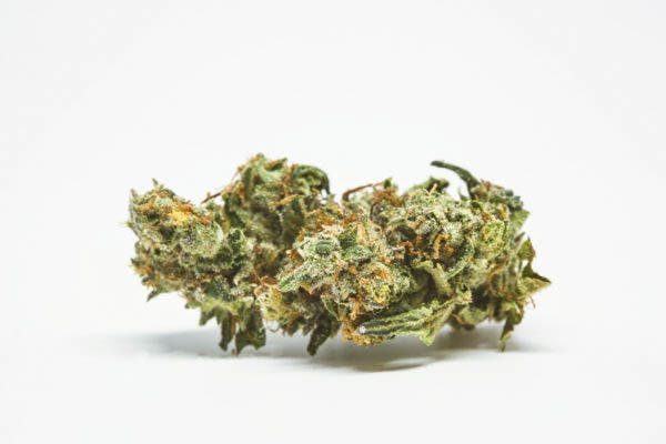 Parvati88 Here Are The Rarest Cannabis Strains On Earth Right Now