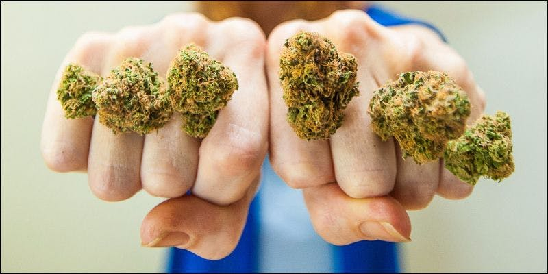 RESTRICTIONS FOSTER BLACK MARKET 5 State Of Marijuana: The Most Important Cannabis Event This Year