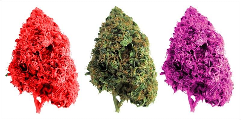 Bud Colors