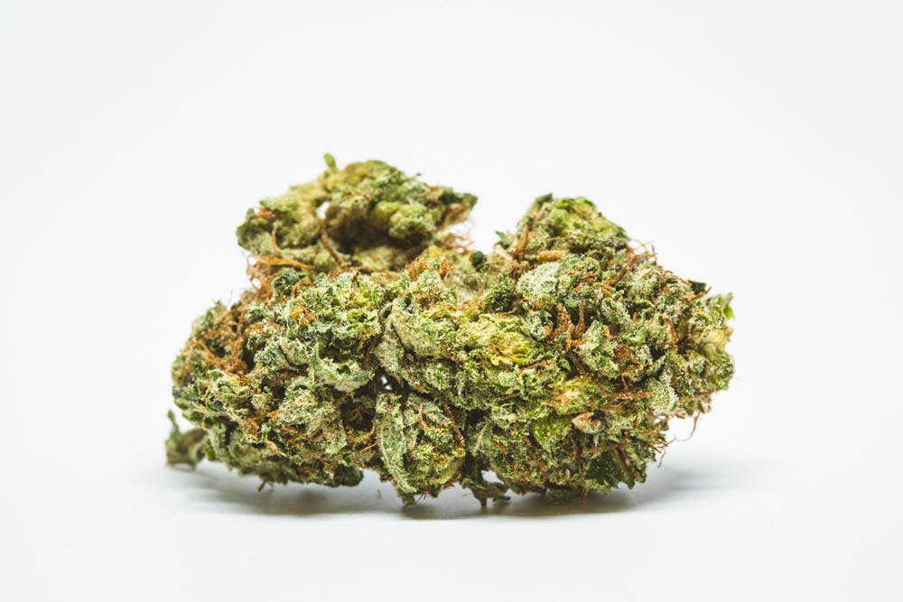 Roadkill Skunk Here Are The Rarest Cannabis Strains On Earth Right Now