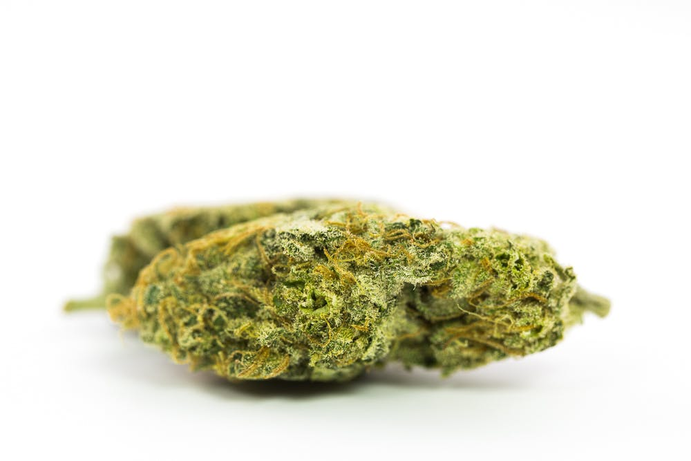 Dr. Grinspoon Weed; Dr. Grinspoon Cannabis Strain; Dr. Grinspoon Sativa Marijuana Strain