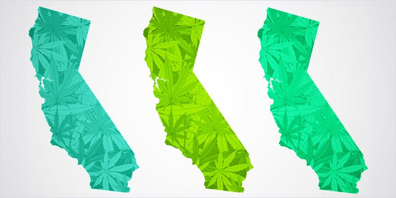 State Of Marijuana 2 State Of Marijuana: The Most Important Cannabis Event This Year