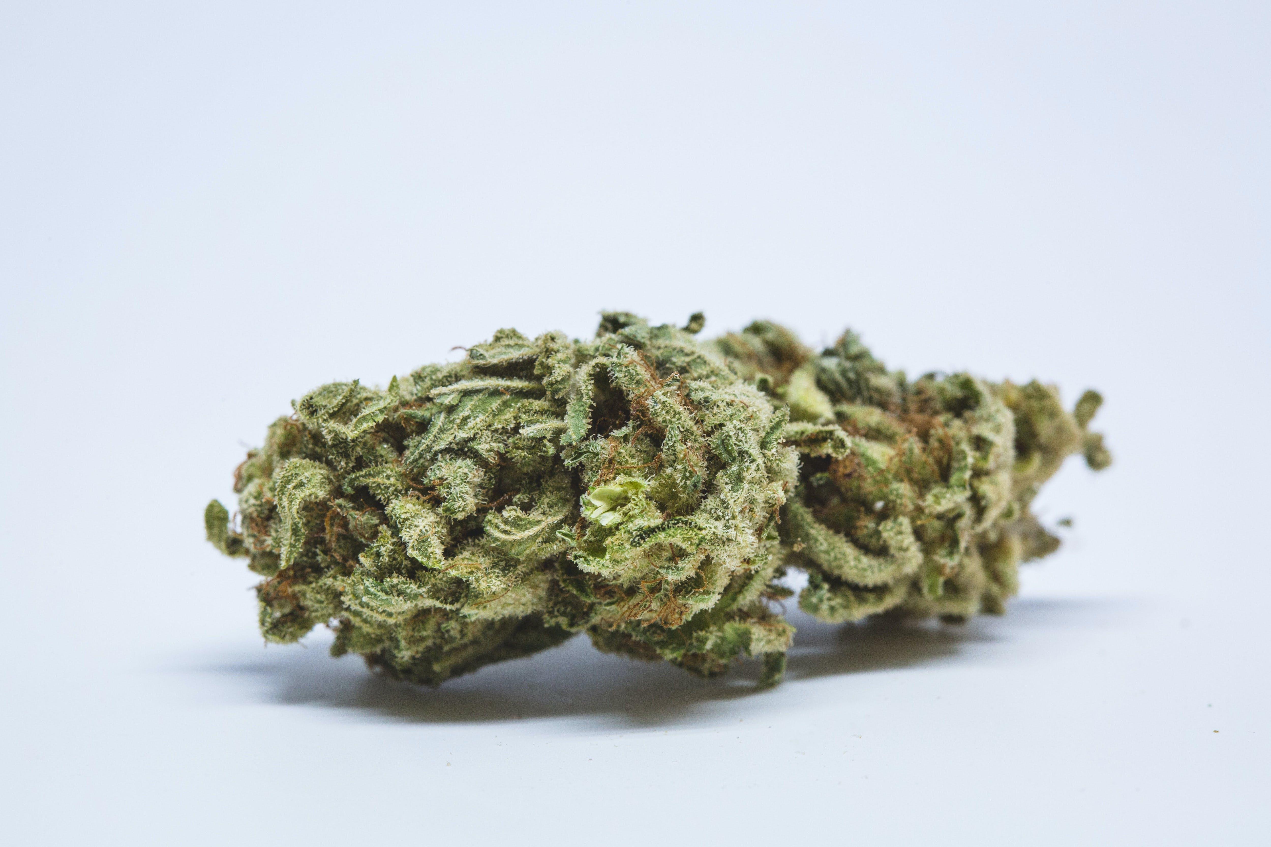 Island Sweet Skunk Weed; Island Sweet Skunk Cannabis Strain; Island Sweet Skunk Sativa Marijuana Strain