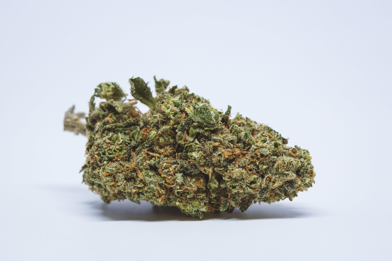 Bubble Gum Weed; Bubble Gum Cannabis Strain; Bubble Gum Hybrid Marijuana Strain