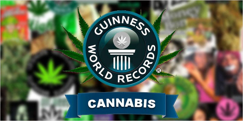 Cannabis World Records