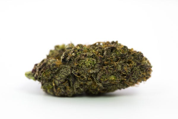 black african magic Here Are The Rarest Cannabis Strains On Earth Right Now