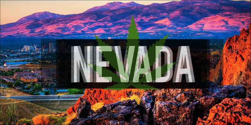 green scene nevada hero Why Are Cannabis Users Increasingly Being Denied Gun Rights?