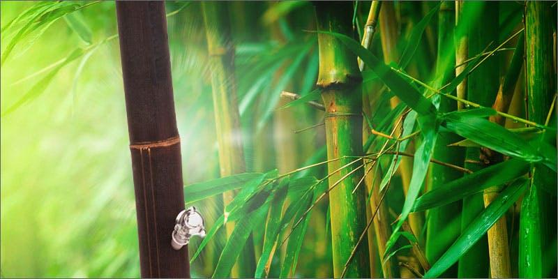 bamboo bong