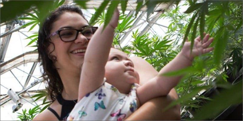 Medical cannabis shortages