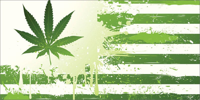 poll adults smoking marijuana flag State Of Marijuana: The Most Important Cannabis Event This Year