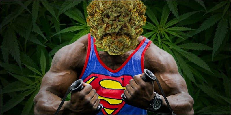 strongest strains