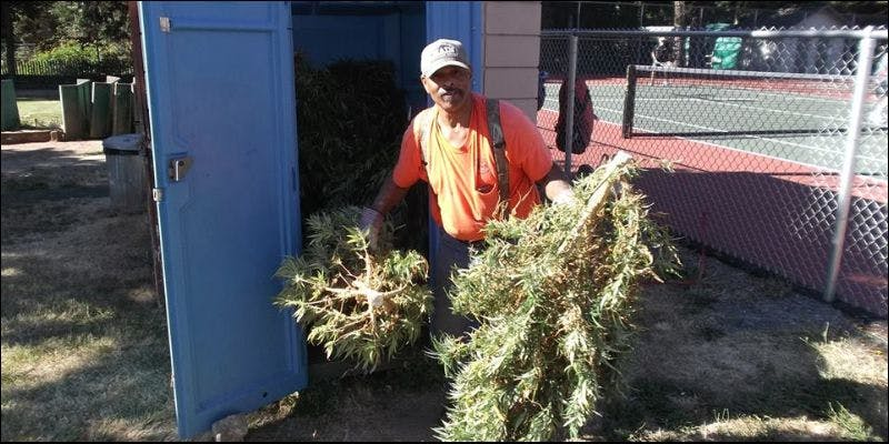 weed filled portable toilet 3 State Of Marijuana: The Most Important Cannabis Event This Year